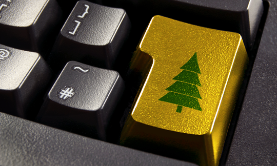 Get Ready - The Online Holiday Shopping Season is Coming